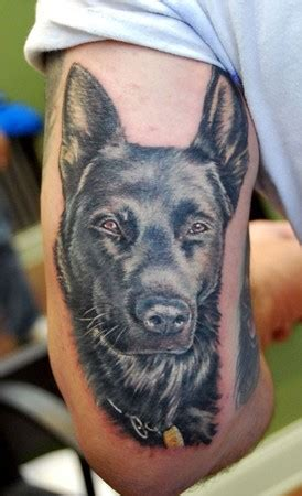 k9 tattoo infamous company tattoos shane oneill color