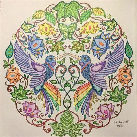 secret garden coloring book target livros de colorir para adultos relaxe e mostre seu talento
