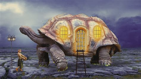 turtle house turtle house photo manipulation photoshop tutorial cs6 cc youtube
