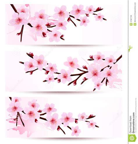 design bunga sakura three spring banners with blossoming sakura branch stock