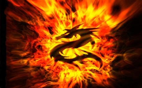 Pin fire dragon wallpapers wallpaper cave on pinterest