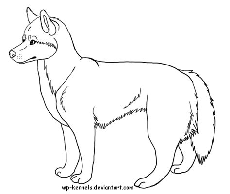 siberian husky coloring book stress relief coloring book for grown ups animal coloring book books free siberian husky lineart by chaolithe on deviantart
