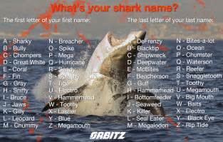 Quiz what s your shark name the huffington post