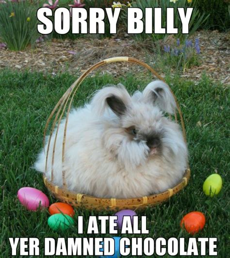 Easter Meme Funny - easter memes and hilarity that will make you smile thechive