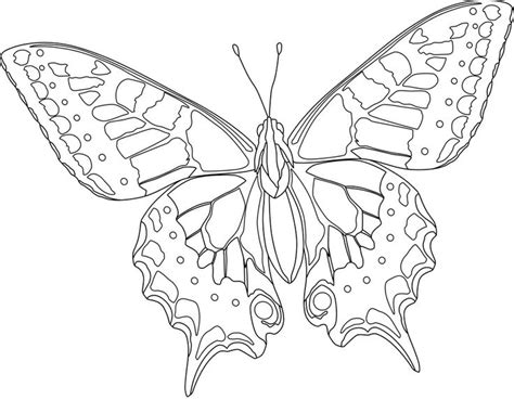 difficult butterfly coloring pages butterfly coloring pages bestofcoloring com