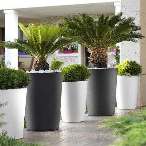 Grand Pot Pour Jardin by Pot De Fleurs Cassio