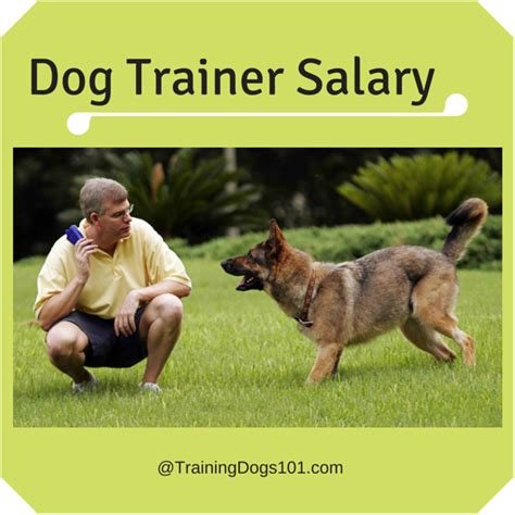 trainer salary earnings report trainer salary dogs 101