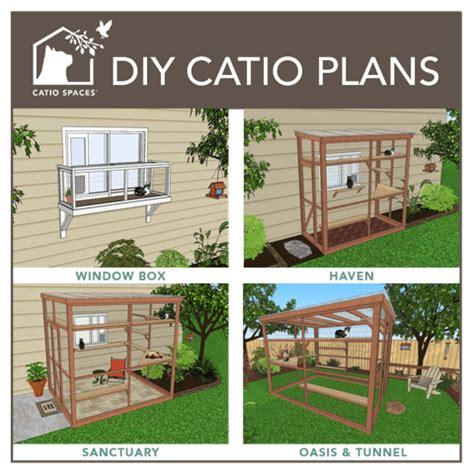 diy catio plan winners the conscious cat