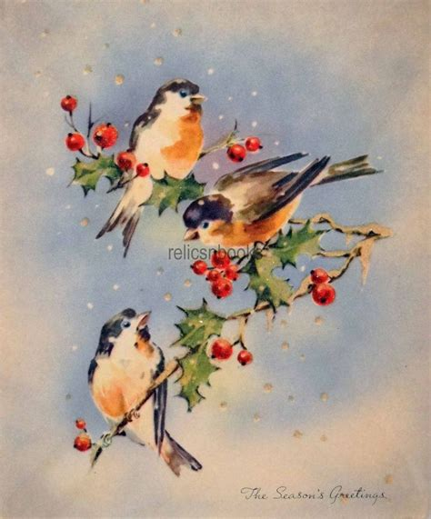 and cards 444 best bird cards illustrations images on