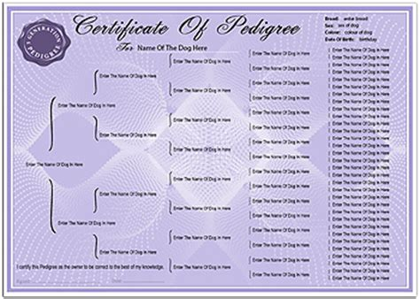 Pedigree Certificate Template pedigree certificates pedigree certificate forms