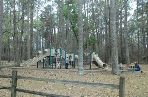 Santee State Park Cabin Rentals by Santee State Park Sc Top Tips Before You Go With
