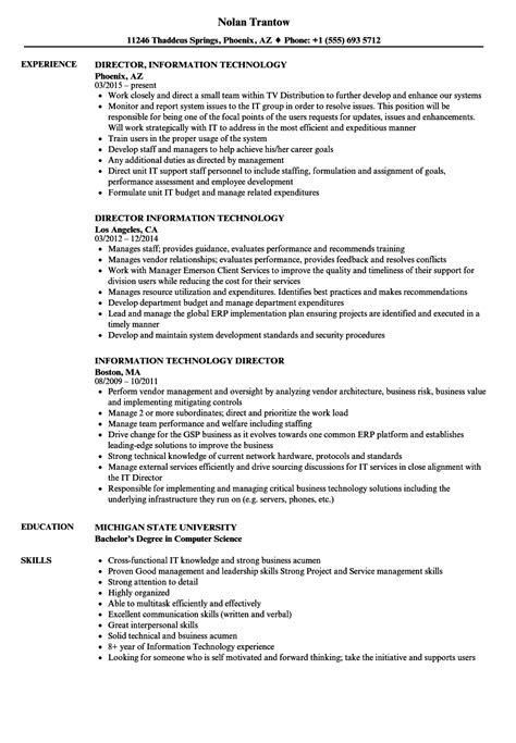 information technology resume examples inssite