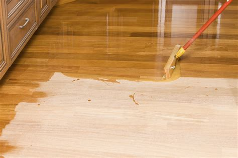wood floor protection daily basic hardwood floor protection homesfeed