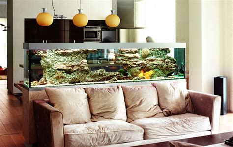 aquarium home decor quirky aquarium decorations townhouse aquarium 37 asian