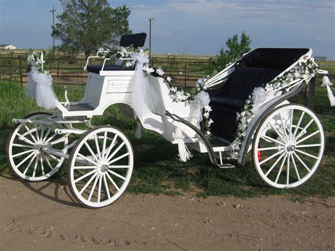 buggy wagen carriage
