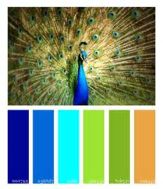 peacock colors 1000 images about palettes on design