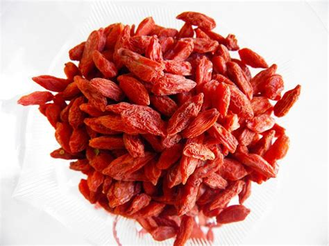 Goji Berry health benefits of goji berries for