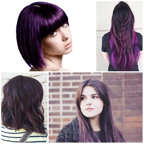 dark purple l shade purple hair color for dark best hair color 2017
