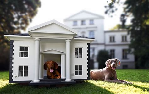 dog house mansion 41 cool luxury dog houses for your pooch