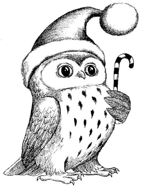 holiday owl coloring page free coloring pages of christmas owl