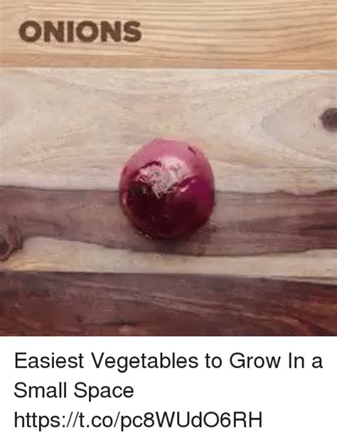 Onions Easiest Vegetables To Grow In A Small Space What Are The Easiest Vegetables To Grow In A Garden