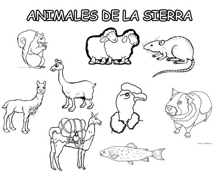 imagenes animales de la sierra animales de la sierra para colorear imagui