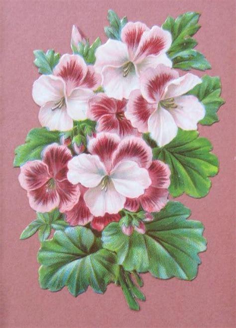 A Frame Cottage ivy geranium art nouveau frame victorian scrap bohemian