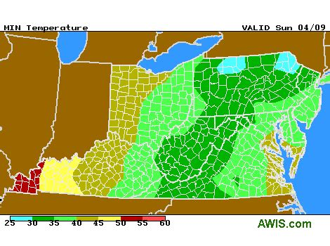 update on frost situation this morning and outlook for