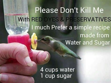 hummingbird food 4 cups water 1 cup sugar bring water
