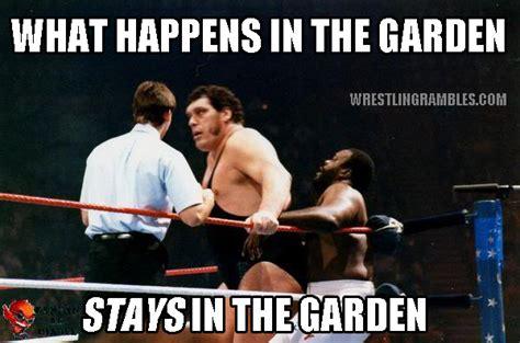 Wrestling Memes - wrestling rambles exclusive meme s wrestling rambles