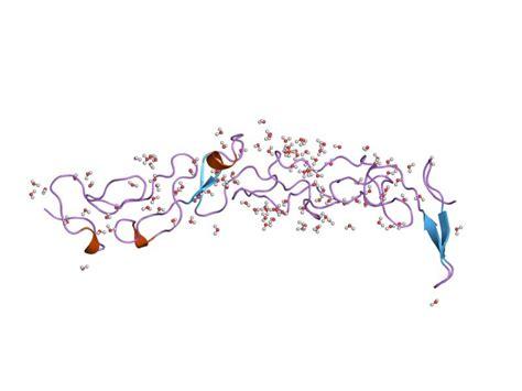 protein laminin laminin