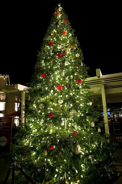 fil a waters christmas lights fil a christmas lights start friday in ta