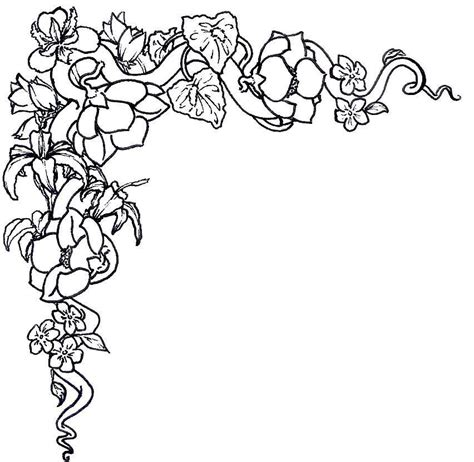 rose coloring pages border outlines of flowers coloring home