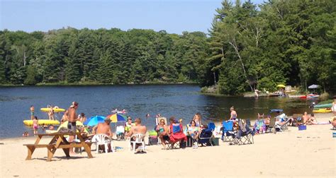 Outdoor Dog Bed Amazon Hit The Beach In Ontario S Cottage Country This Summer