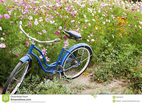 giardino di fiori giardino di fiori della bicicletta fotografia stock