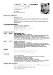 ejemplo curriculum vitae cv design bild