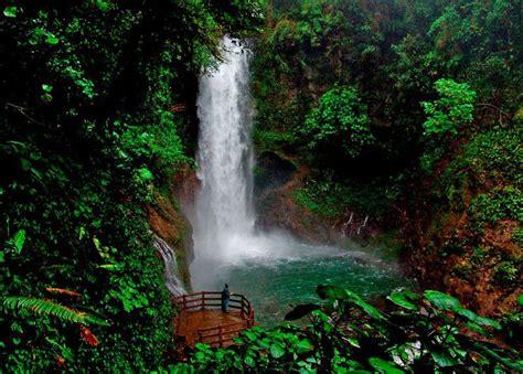 La Paz Waterfall Gardens Costa Rica by Jardines Catarata La Paz Costa Rica Quot Pura Vida Quot