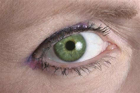 imagenes de ojos verdes y azules los 8 colores de ojos m 225 s raros del mundo la voz del muro
