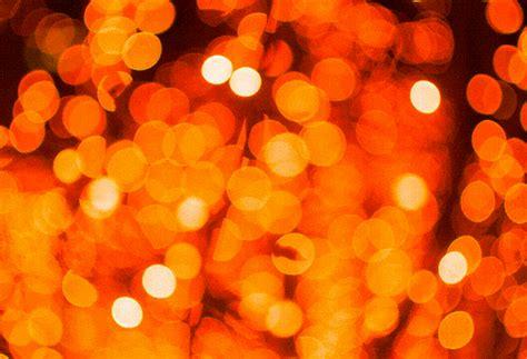 www lights lights ericportis