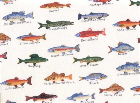 m m bedding gone fishing sheet set creme fish print