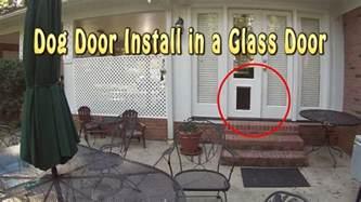 doggie door glass door installing a dog door into glass french doors youtube