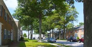 homes for rent in norfolk va norfolk va homes for rent features and amenities pet