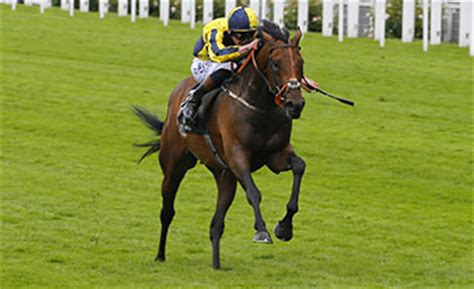 my dream boat horse dream prince of wales s stakes win for cox and kirby