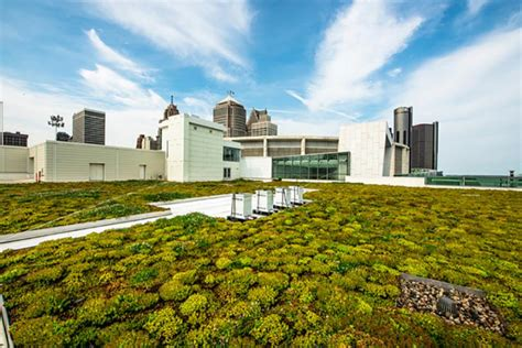 living roof michigan observation area planned for cobo center s living green roof
