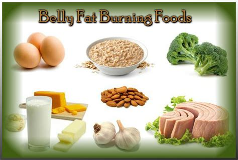 Foods That Shed Belly by Burning Foods What To Eat For Belly