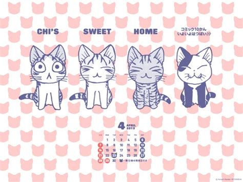 chi sweet home chii s sweet home chi chi s sweet home chii cat