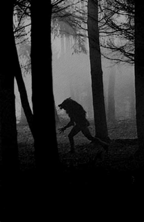 dog soldiers 2002 werewolves rock 653 best images about cursed on pinterest wolves a wolf