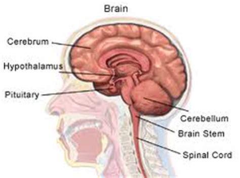 hypopituitarism diagnosis symptoms  treatment