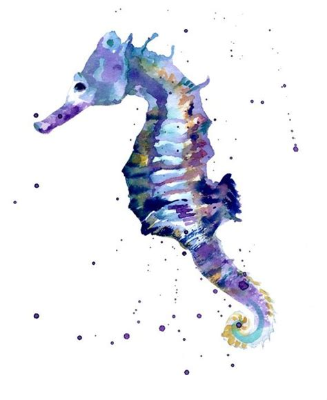 seahorse colors seahorses seahorse and watercolors on