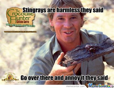 Stingray Meme - crocodile hunter memes best collection of funny crocodile